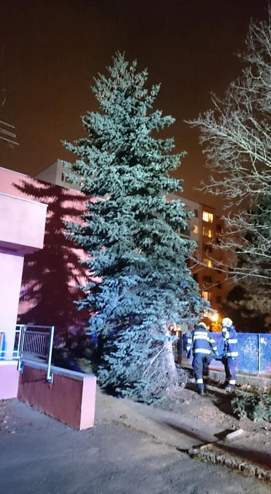Hasiči pokáceli nakloněný strom u mateřské školky